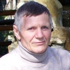 Карл Шифнер