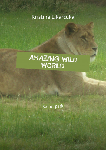Amazing wild world